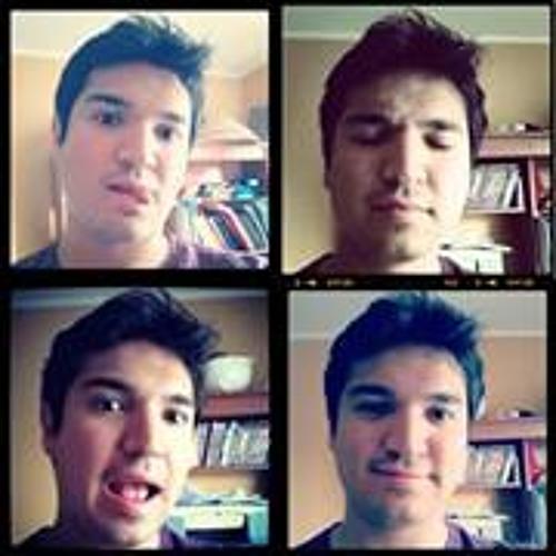 Sebastián Andrés Cruzat's avatar