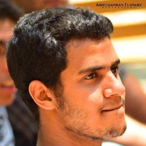Majid Eltayeb's avatar