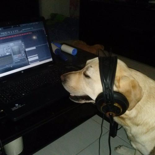 DJ Labraguber's avatar