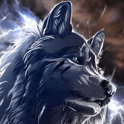 direwolf52's avatar