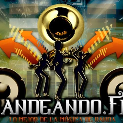 Bandeando Fm's avatar