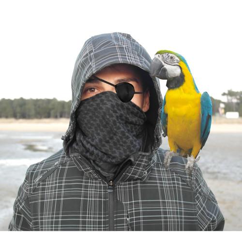 ZkyFox's avatar