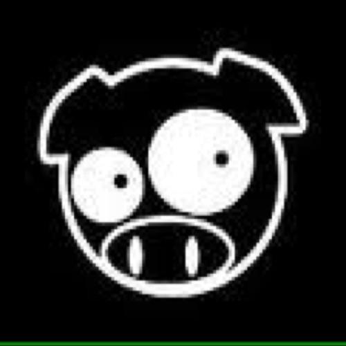 Mr.OB1 AKA RALLY PIG's avatar