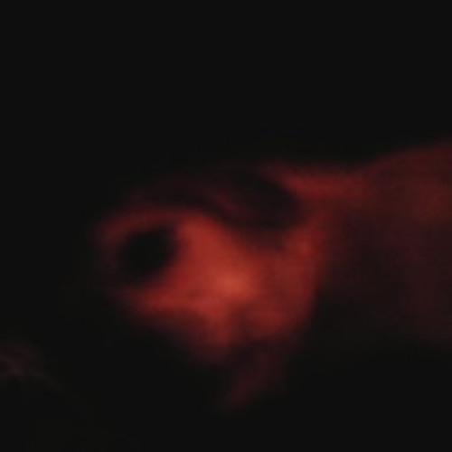 Dakota Heil's avatar