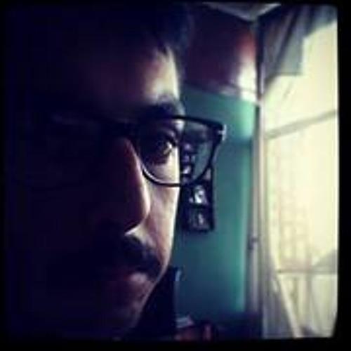 Iman Gheiratmand's avatar