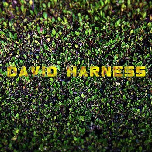 djdavidharness's avatar