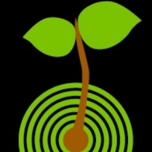 The Vital Record's avatar