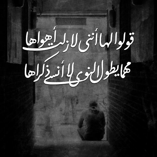 Ẍx Shimaa Ẍx's avatar