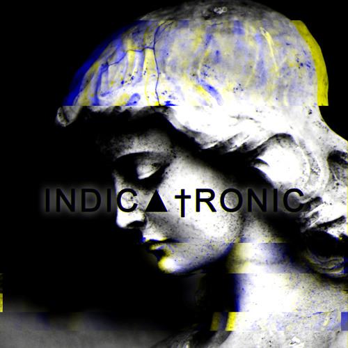 Indicatronic's avatar