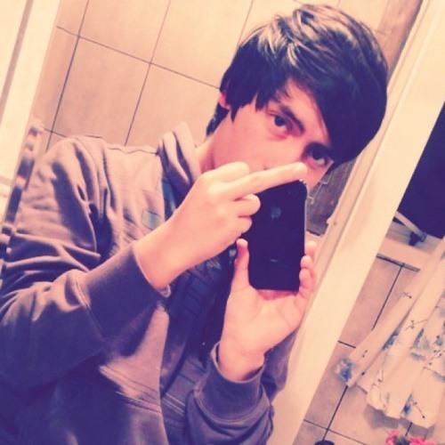 Nicolas Low Osorio's avatar