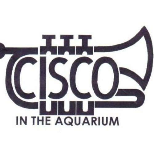 Cisco In The Aquarium's avatar
