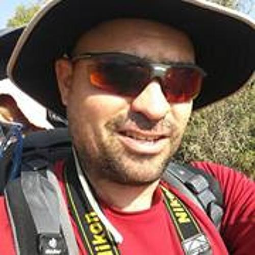 Ronen Manevich's avatar