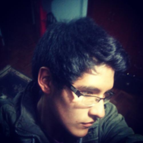 Rodrigo Mendieta R.'s avatar