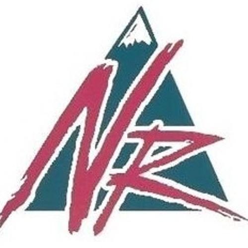 Nevis Radio New Artists's avatar