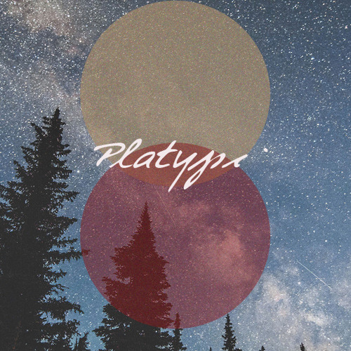 Platyπ's avatar