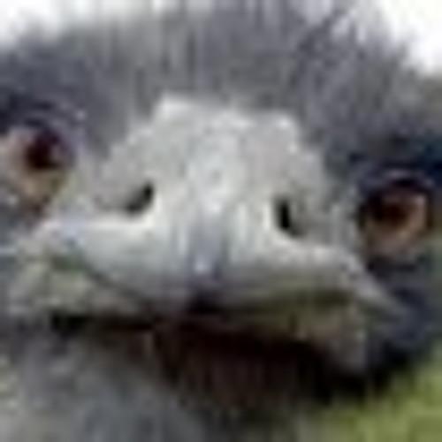 LEANDRO ALBENAZ's avatar