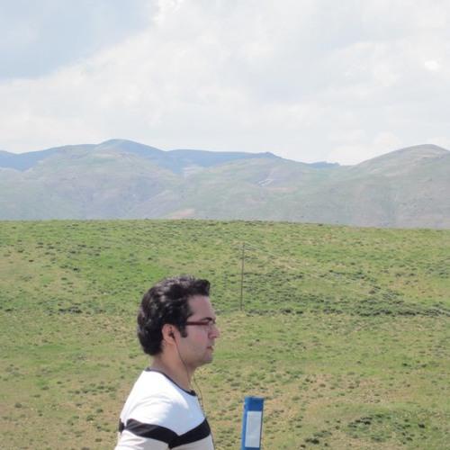 amshf's avatar