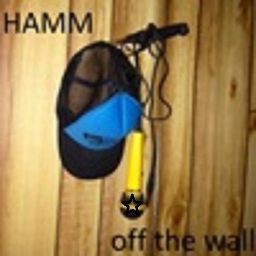 HAMM&AJage pt.2's avatar