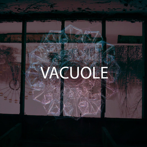Vacuole - Bleak