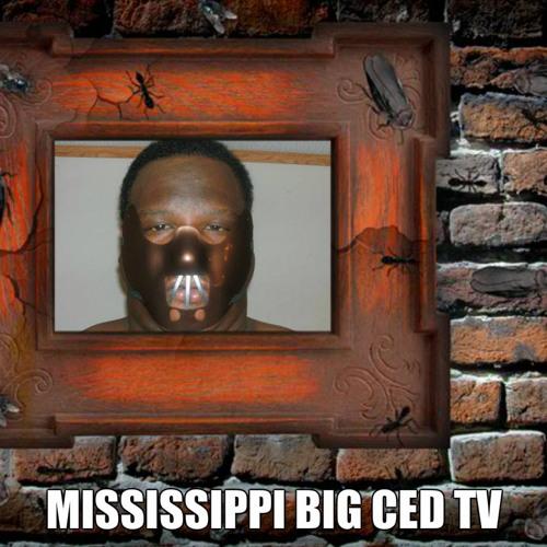 Mississippi Big Ced/OCF's avatar