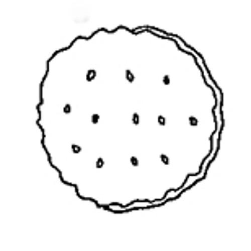 normalcookie's avatar