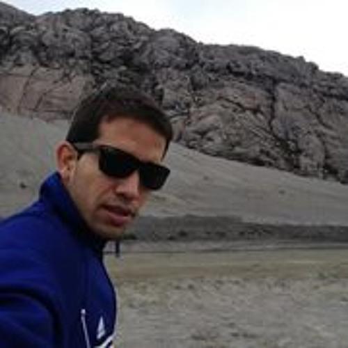 Felipe Vergara S's avatar