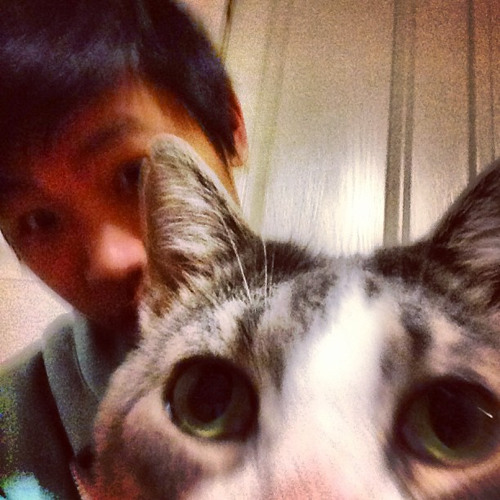 Lanny Huang's avatar