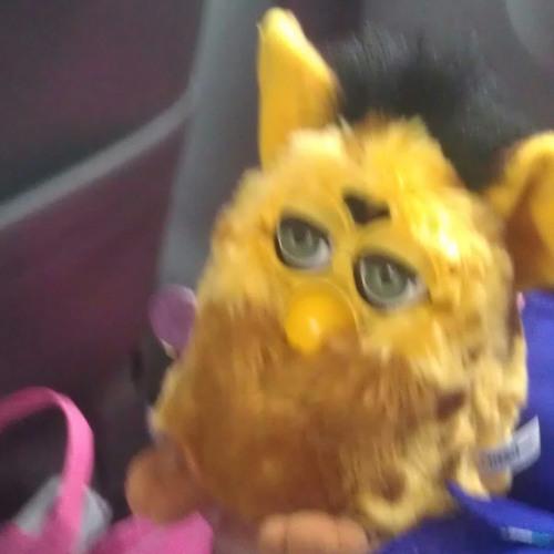 amarillo_fur's avatar