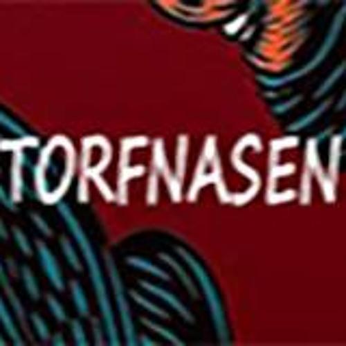 Torfnasen's avatar