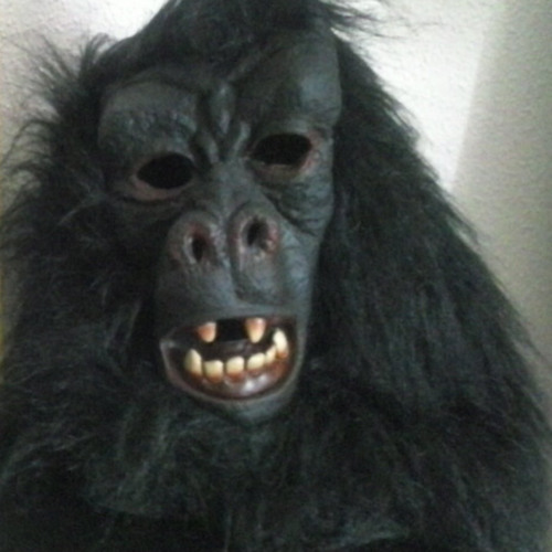 Monguito's avatar