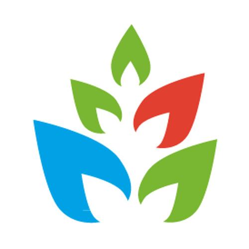 mojitosites.com's avatar