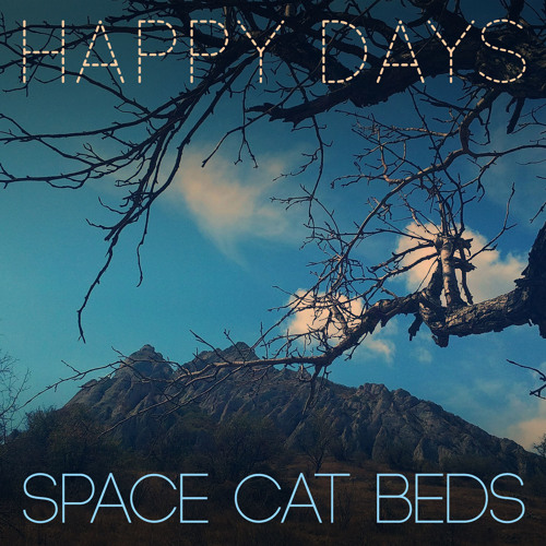 Space Cat Beds's avatar
