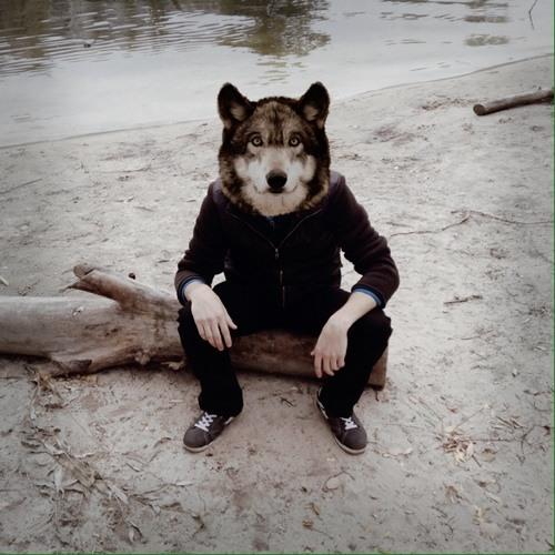 FelixMZ's avatar