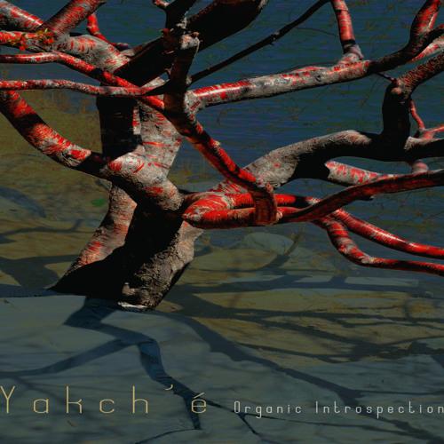 Yakch'e's avatar