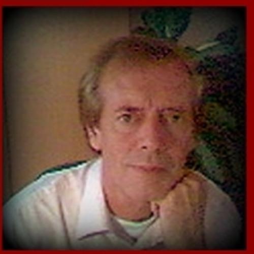 Hans van der Velde's avatar