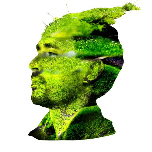 Mossman dream's avatar