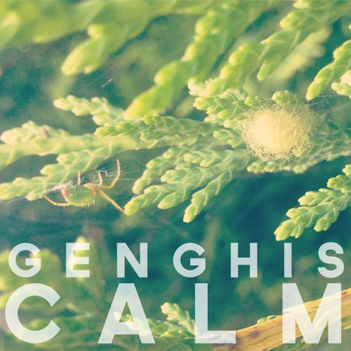 Genghis Calm's avatar