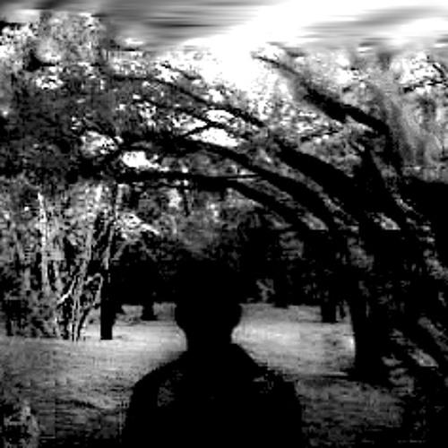 Mitchel Peterr's avatar