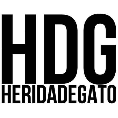 HERIDADEGATO's avatar