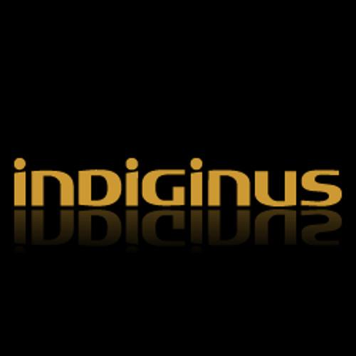 Indiginus's avatar