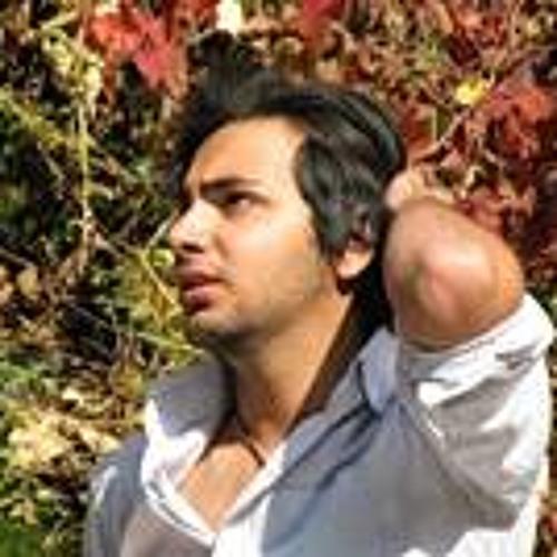 Ehsan Tabatabaei Azad's avatar