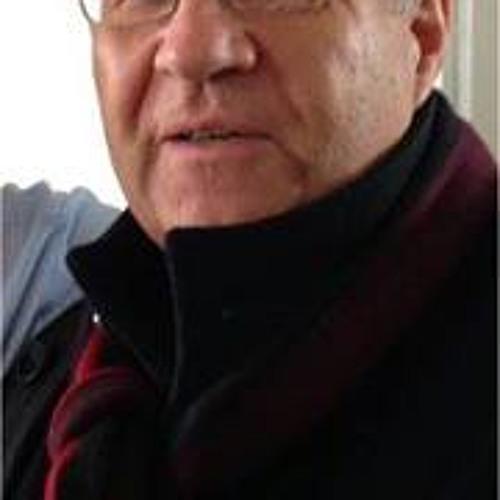 gislibald's avatar
