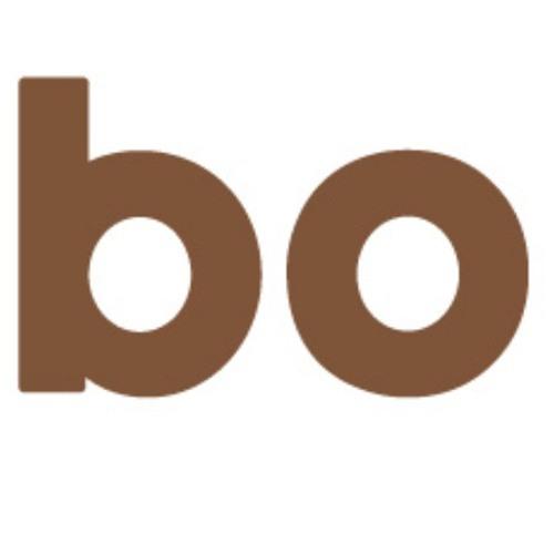 Bo Studios's avatar