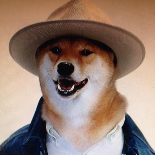 Doge990's avatar