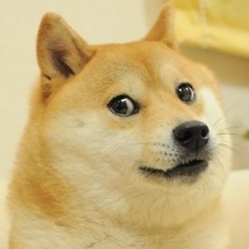 .Doge.'s avatar