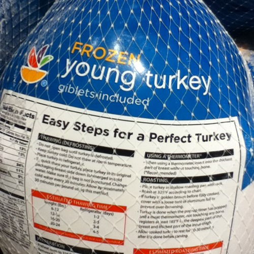 Yung Turkey jr.'s avatar