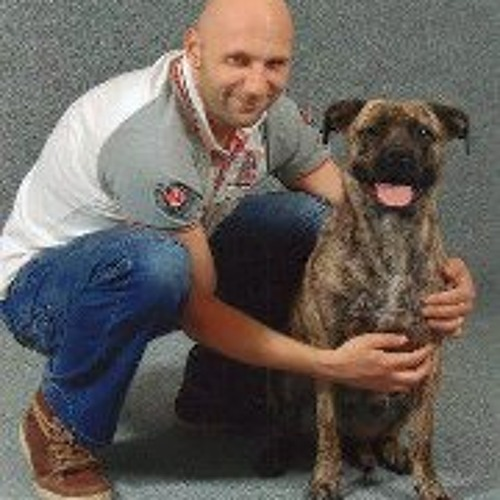 Danny Scheffer's avatar