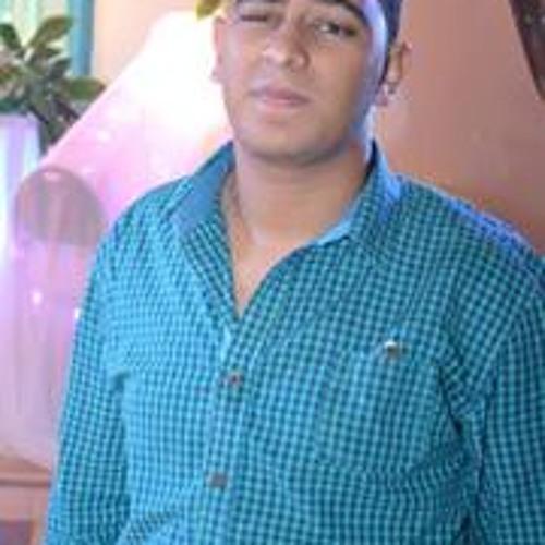 Ahmed M. Hafez's avatar