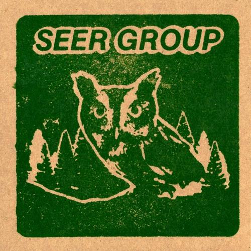 Seer Group's avatar