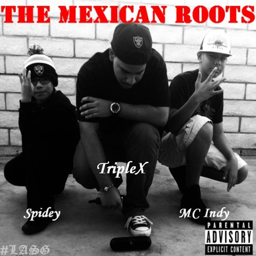 The Mexican Roots's avatar